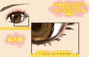 カンナたんの目の縁分析